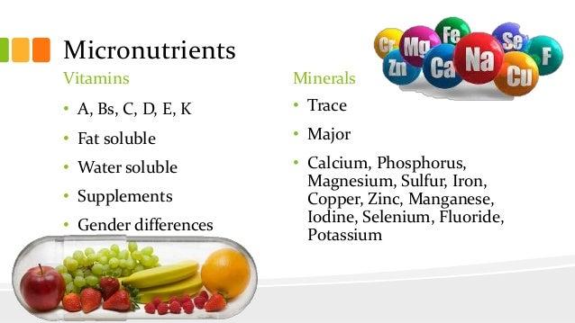 Nutrition Basics