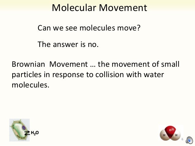 brownian motion diffusion and osmosis Today, we will be looking at three basic movements: diffusion, osmosis, and   this movement is due to the kinetic energy that is responsible for brownian.