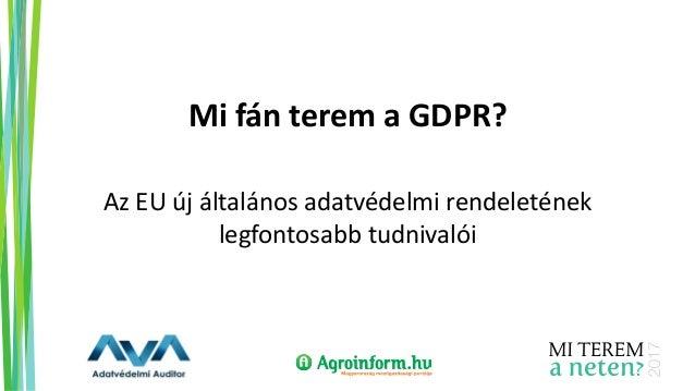 Mi fán terem a GDPR? Az EU új általános adatvédelmi rendeletének legfontosabb tudnivalói