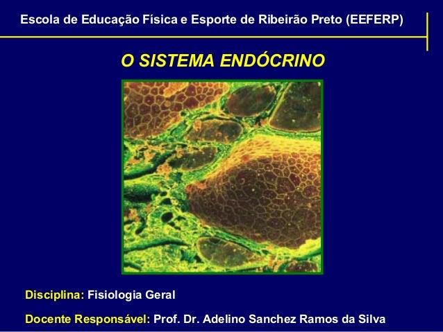 Escola de Educação Física e Esporte de Ribeirão Preto (EEFERP)  O SISTEMA ENDÓCRINO  Disciplina: Fisiologia Geral Docente ...