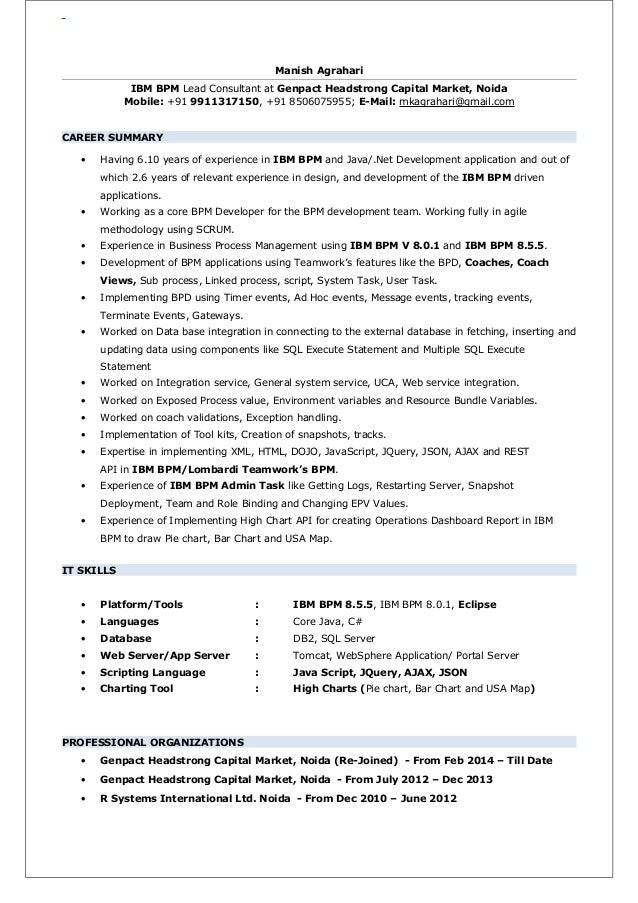 ibm bpm developer resume