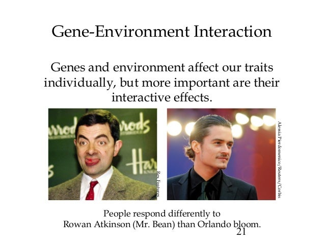 """psy 201 nature nurture interaction Since the 16th century, when the terms """"nature"""" and """"nurture"""" first came into use, many people have spent ample time debating which is more important, but these discussions have more often led to ideological cul-de-sacs rather than pinnacles of insight."""