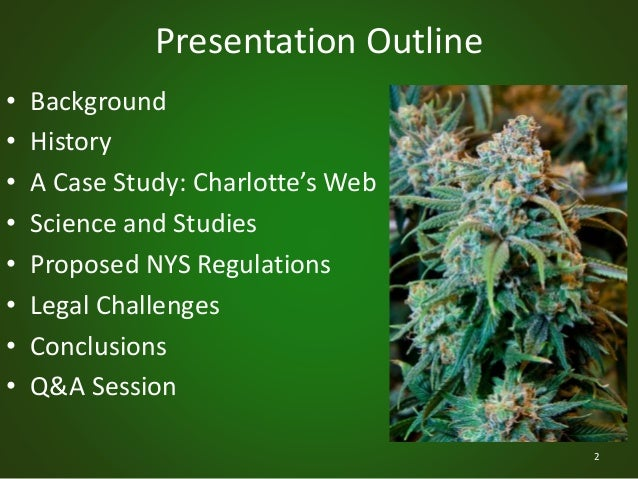 thesis statement regarding legalization of marijuana for medical Free legalizing marijuana papers, essays, and research papers  however,  marijuana is one of the most misunderstood drugs on the market  with states  like california with medicinal marijuana legal, many of the patients who need it  and.