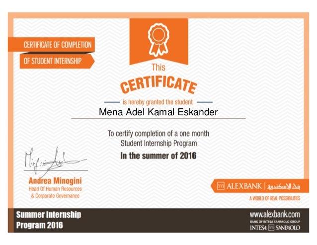 Mena Adel Kamal Eskander