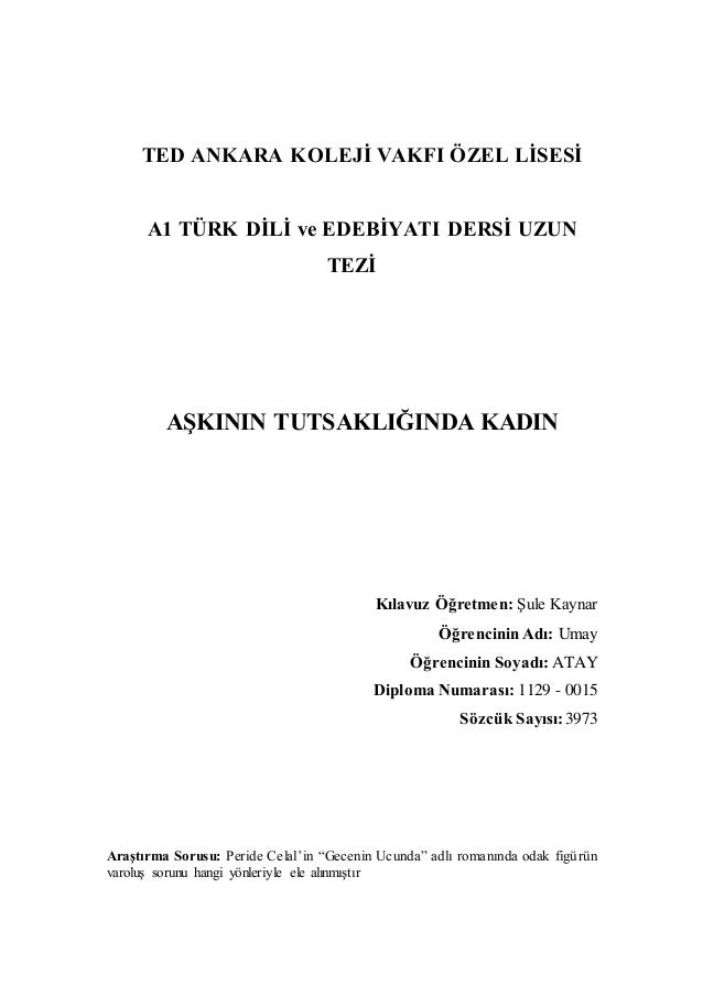 turkish essay
