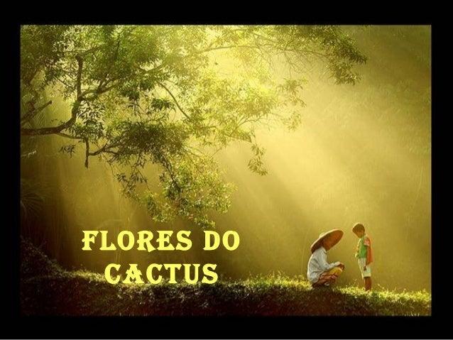 Flores do CaCtus