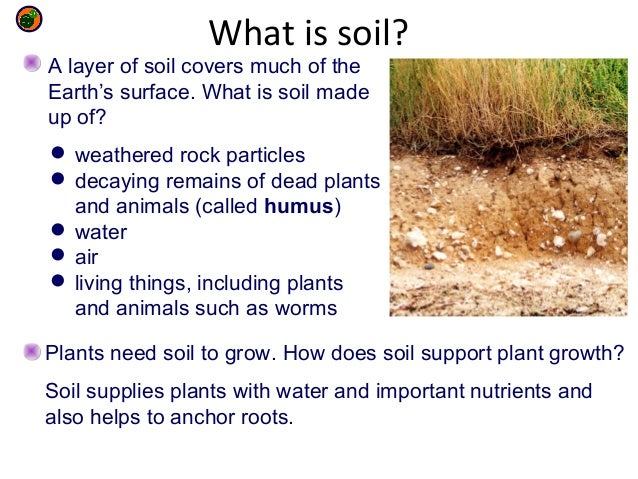 9 g environmental chemistry for What is rich soil called