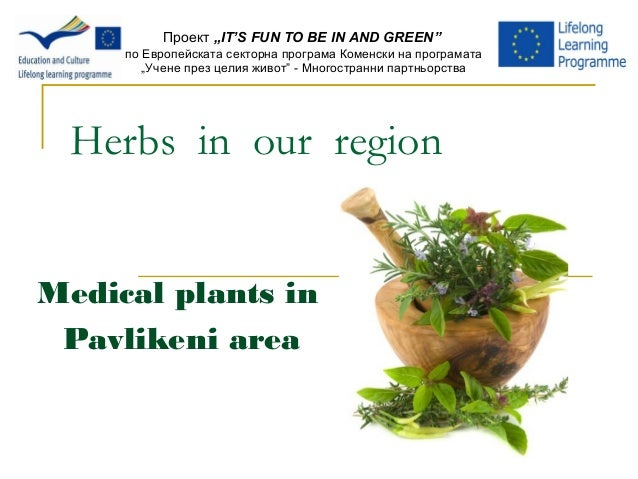 "Herbs in our region Medical plants in Pavlikeni area Проект ""IT'S FUN TO BE IN AND GREEN"" по Европейската секторна програм..."