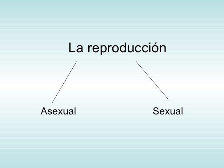 La reproducción Asexual    Sexual
