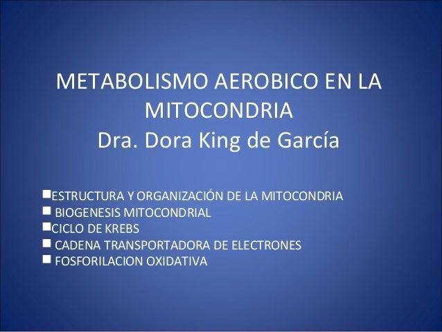 METABOLISMO AEROBICO EN LA MITOCONDRIA Dra. Dora King de García ESTRUCTURA Y ORGANIZACIÓN DE LA MITOCONDRIA  BIOGENESIS ...