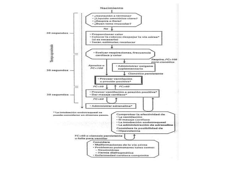 Indicaciones de intubación endotraqueal<br /><ul><li>Meconio