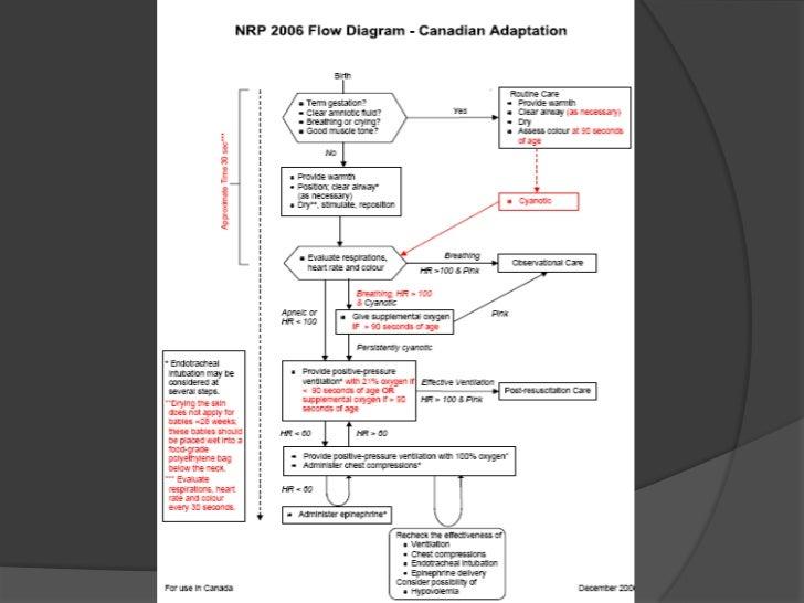 ¿Qué se debe hacer después de una reanimación?<br />RN con alto riesgo de deteriorarse después de la normalización de sus ...