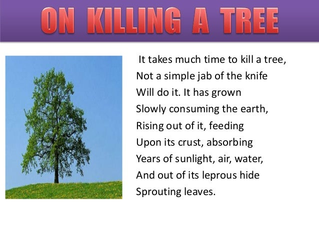 gieve patel poems on killing a tree