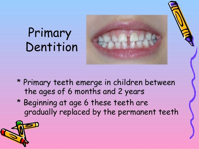 primary and permanent dentition Primary goal for treatment of the young permanent dentition a tooth without a  vital pulp, however, can remain clinically functional1 the indications, objectives .