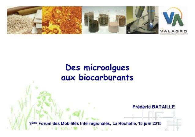 Des microalgues aux biocarburants 3ème Forum des Mobilités Interrégionales, La Rochelle, 15 juin 2015 Frédéric BATAILLE