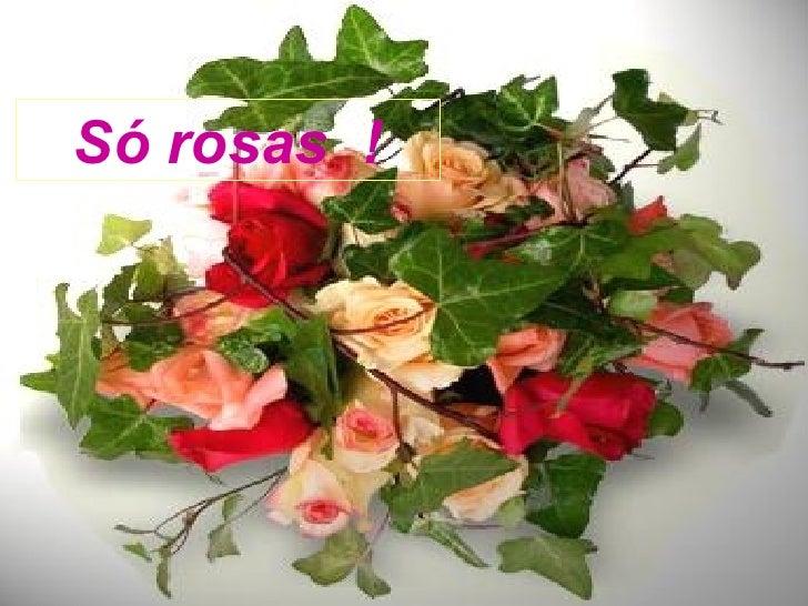 Só rosas  !