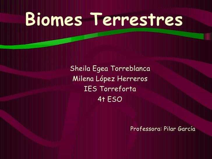 Biomes Terrestres <ul><li>Sheila Egea Torreblanca </li></ul><ul><li>Milena López Herreros </li></ul><ul><li>IES Torreforta...