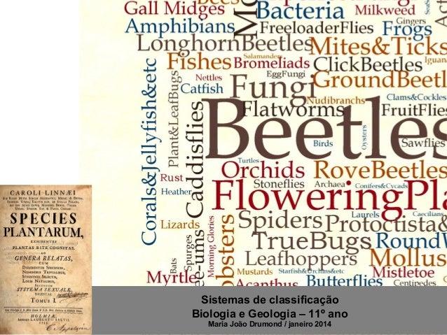 Sistemas de classificação Biologia e Geologia – 11º ano Maria João Drumond / janeiro 2014