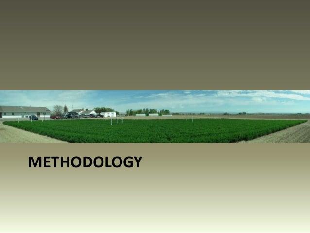 effects of water on growth and Résumé effet du déficit hydrique sur le maïs ensilage conduit sous irrigation  gravitaire au périmètre irrigué de tadla (maroc) l'étude de la réponse des  cultures.