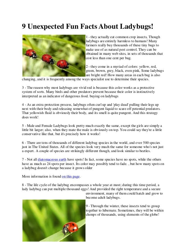 9 unexpected fun facts about ladybugs