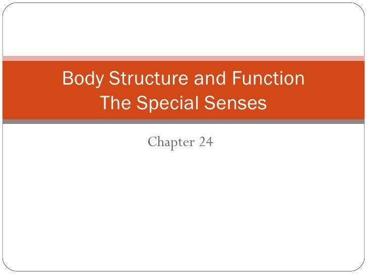 Chapter 24 Body Structure and Function The Special Senses