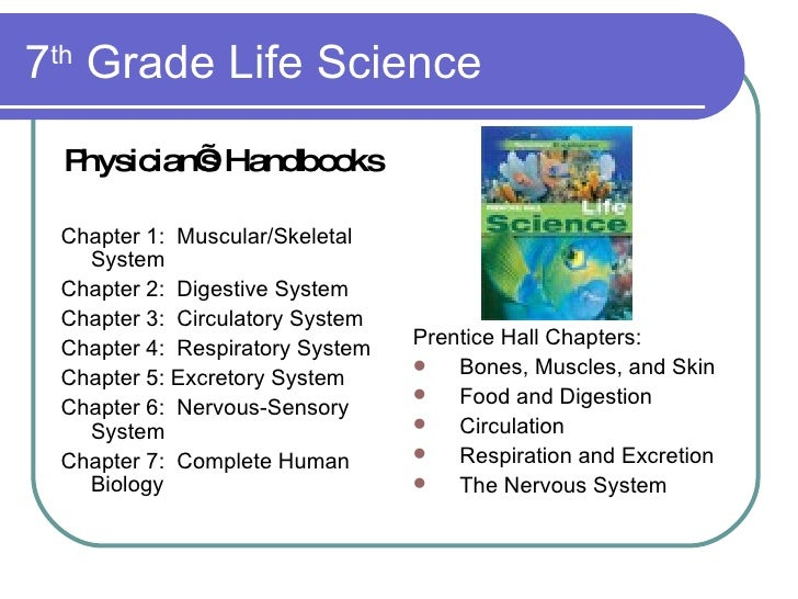 Digestive System Of A Frog Prentice Hall Adapting Textbook Curr...