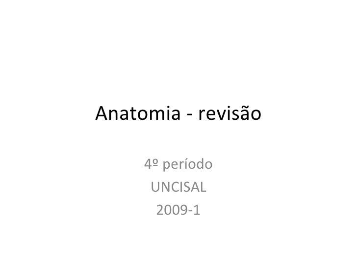 Anatomia - revisão 4º período UNCISAL 2009-1