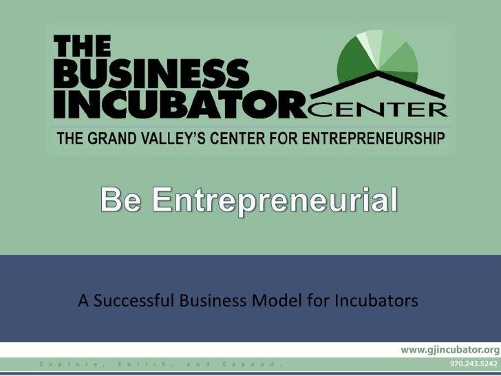 A Successful Business Model for Incubators