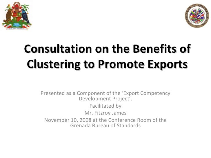 Consultation on the Benefits of Clustering to Promote Exports Presented as a Component of the 'Export Competency Developme...