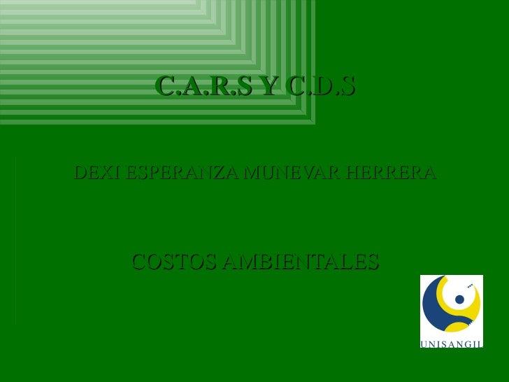 C.A.R.S Y C.D.S DEXI ESPERANZA MUNEVAR HERRERA COSTOS AMBIENTALES