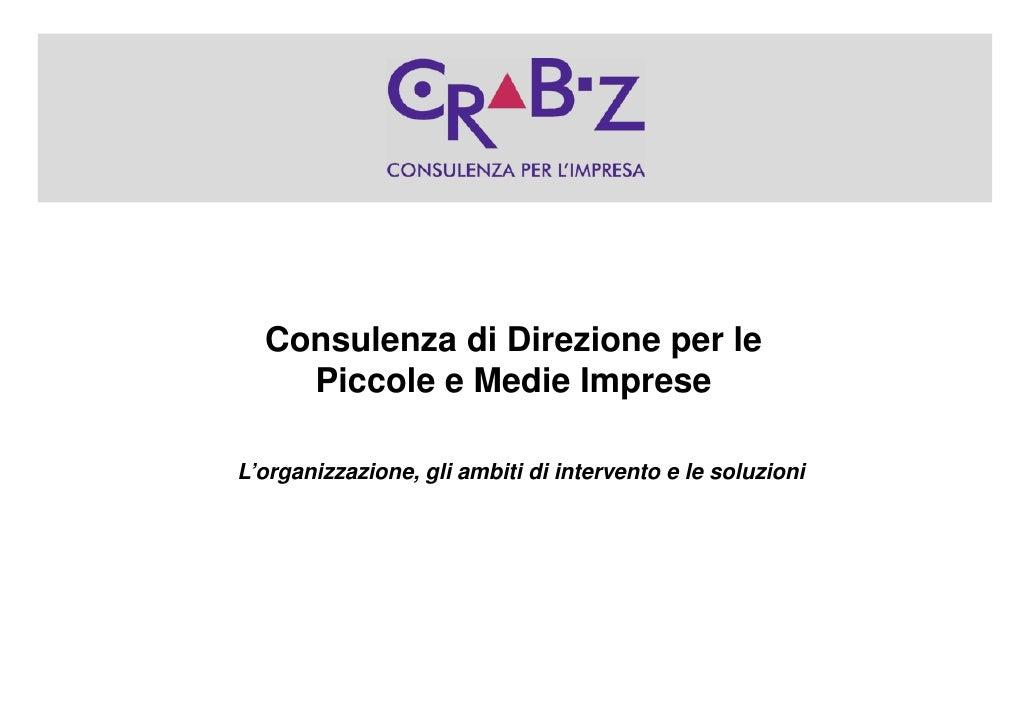 Consulenza di Direzione per le     Piccole e Medie Imprese  L'organizzazione, gli ambiti di intervento e le soluzioni