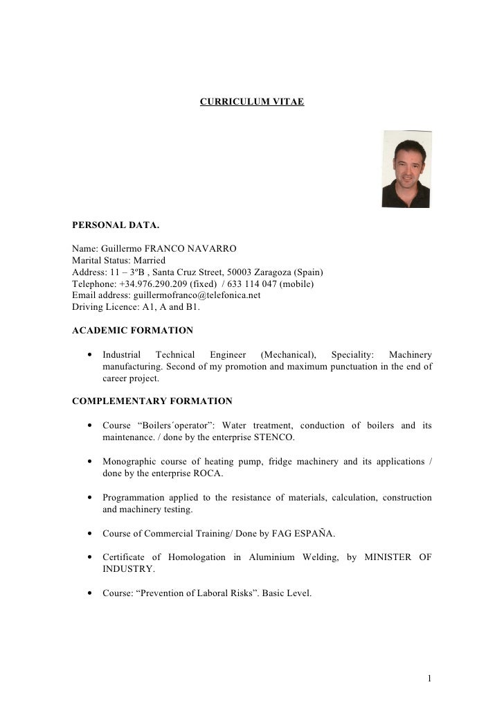 Curriculum Vitae Formato Word Elita Mydearest Co