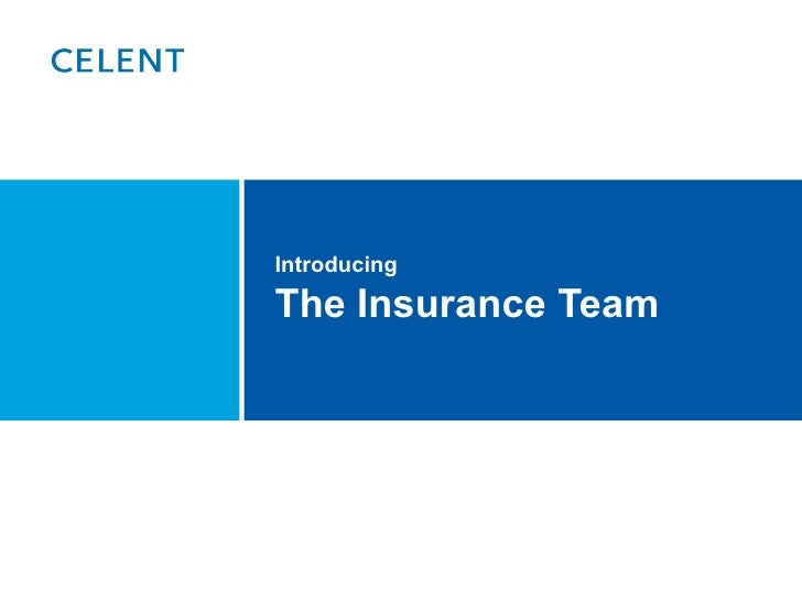 Introducing The Insurance Team