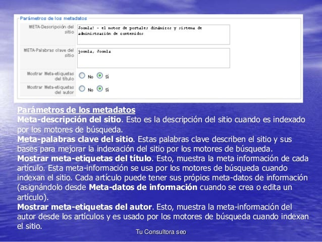 Parámetros de los metadatos  Meta-descripción del sitio. Esto es la descripción del sitio cuando es indexado  por los moto...