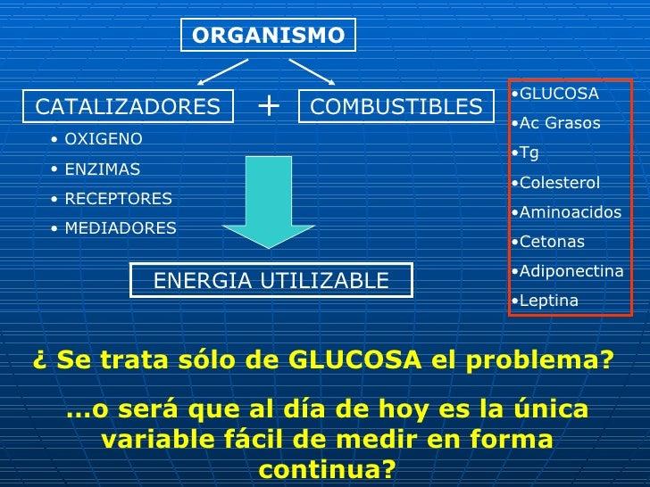 ORGANISMO COMBUSTIBLES <ul><li>GLUCOSA </li></ul><ul><li>Ac Grasos </li></ul><ul><li>Tg </li></ul><ul><li>Colesterol </li>...