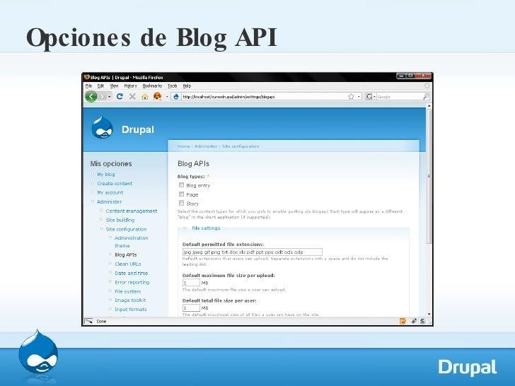 Opciones de Blog API