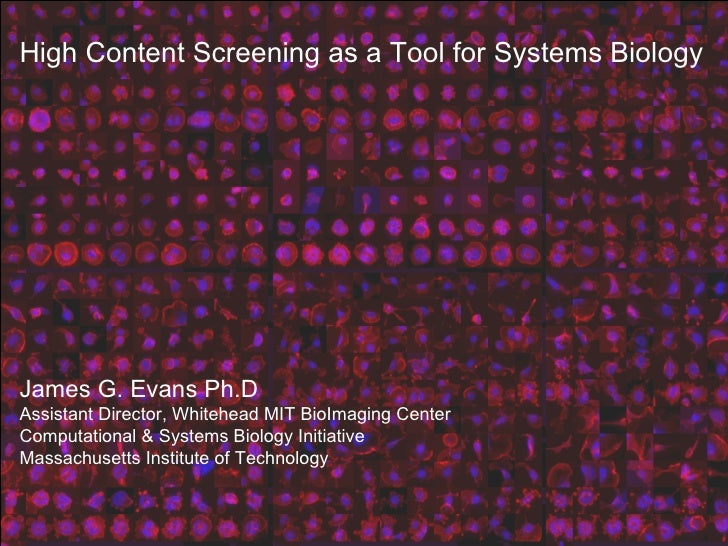 High Content Screening as a Tool for Systems Biology James G. Evans Ph.D Assistant Director, Whitehead MIT BioImaging Cent...