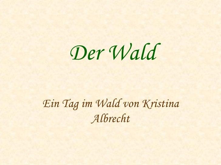Der Wald Ein Tag im Wald von Kristina Albrecht