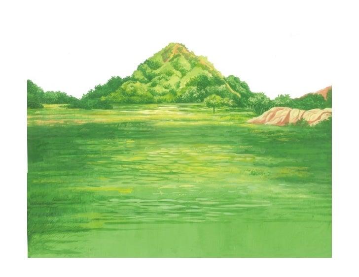 Handcolor Illustrations01