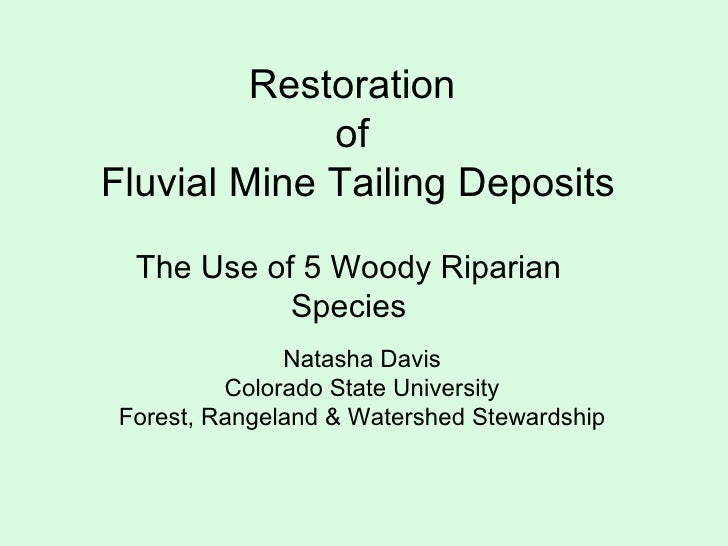 Restoration  of  Fluvial Mine Tailing Deposits The Use of 5 Woody Riparian Species Natasha Davis Colorado State University...