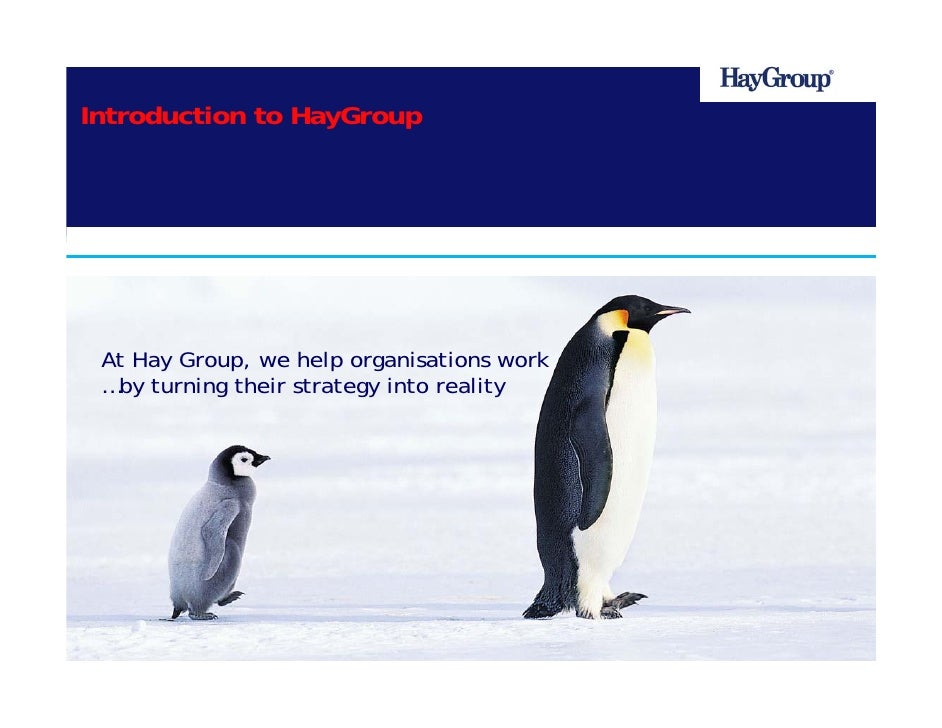 Introduction to HayGroup    HayGroup Centre for Learning       At Hay Group, we help organisations work   …by turning thei...
