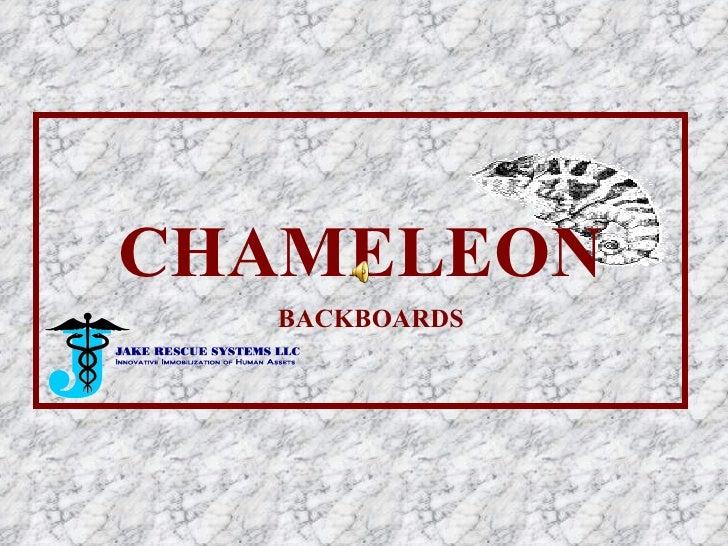 CHAMELEON BACKBOARDS