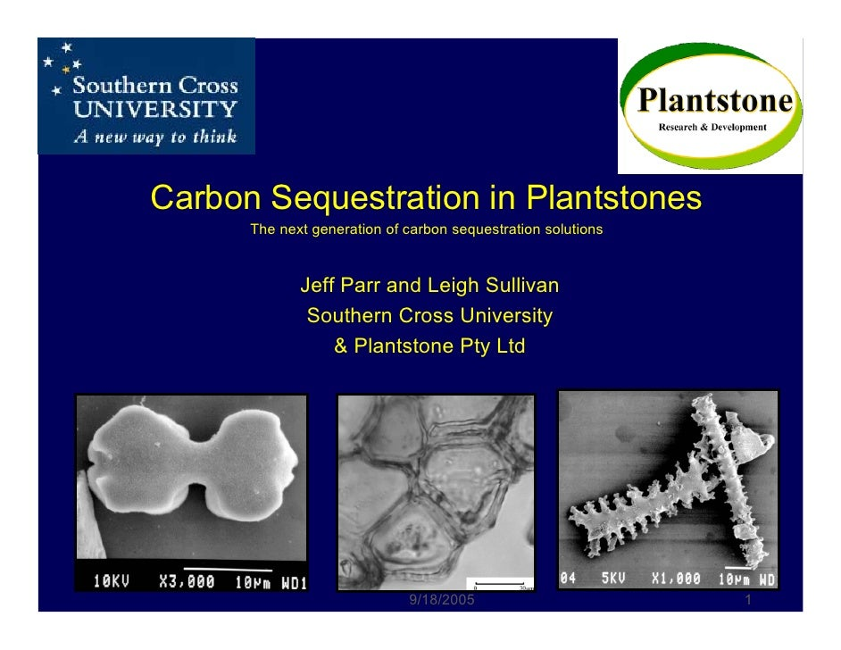 Carbon Sequestration in Plantstones       The next generation of carbon sequestration solutions                Jeff Parr a...