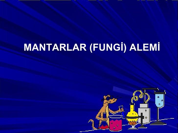 MANTARLAR (FUNGİ) ALEMİ