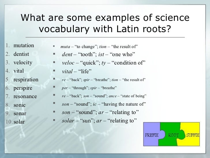 Learning science vocabulary through knowledge of Greek and Latin roots – Latin and Greek Roots Worksheets