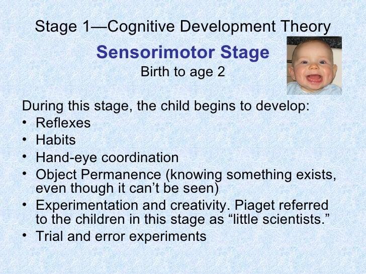piaget u2019s cognitive development theory