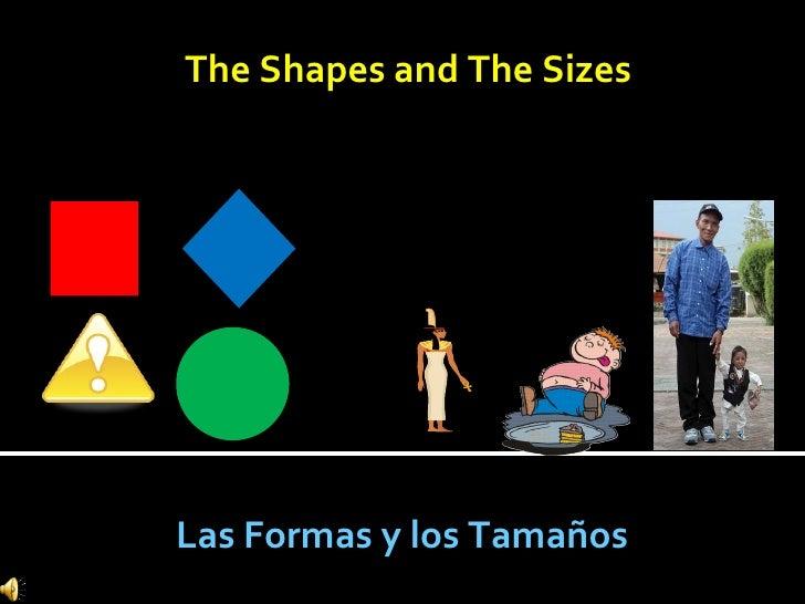 The Shapes and The Sizes Las Formas y los Tamaños