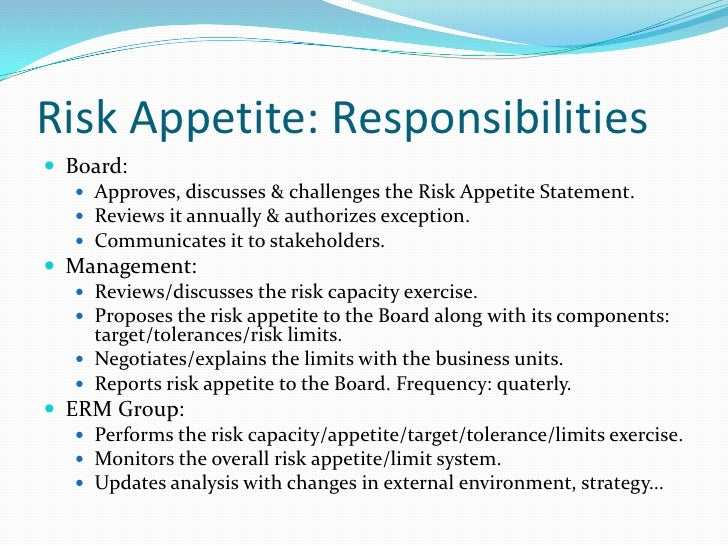 risk appetite template - risk appetite caa dec08 1