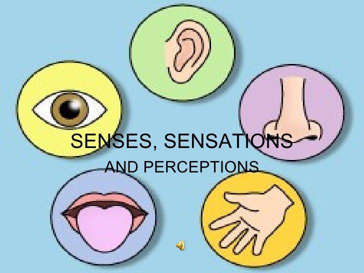 SENSES, SENSATIONS AND PERCEPTIONS