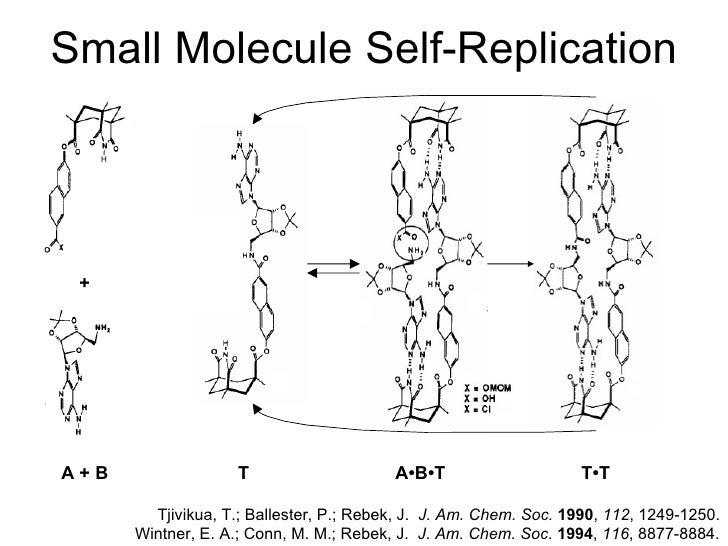 Self-replicating Molecules: An introduction